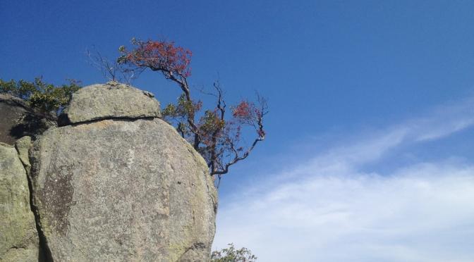 Gunung Datuk hike