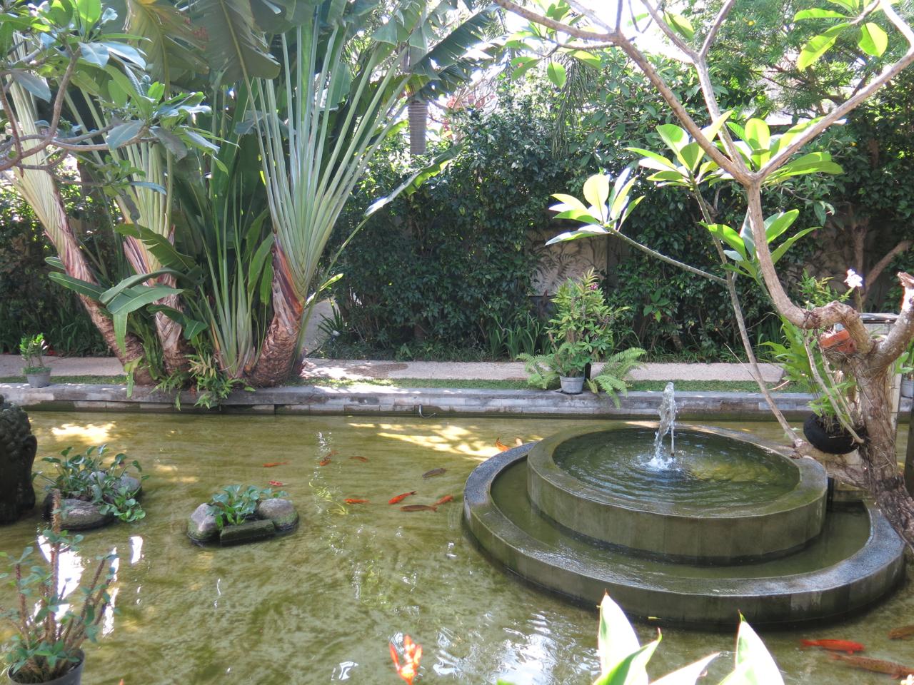 Tony s villa seminyak pokok kelapa for Koi pool villa