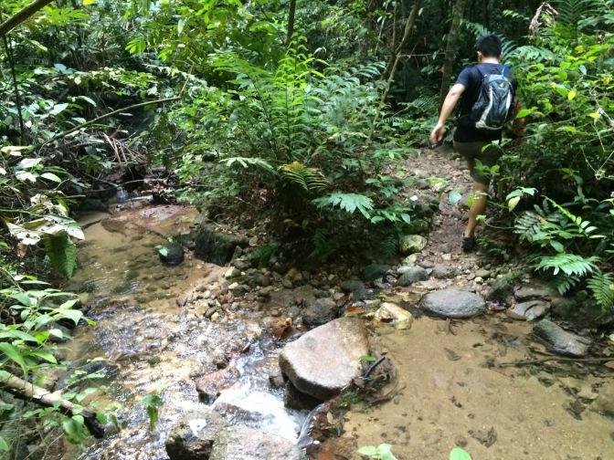 Bukit Saga hike