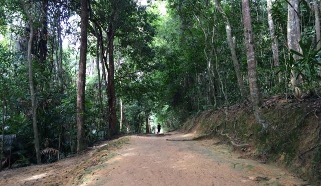 Penang Hill hike via Moon Gate