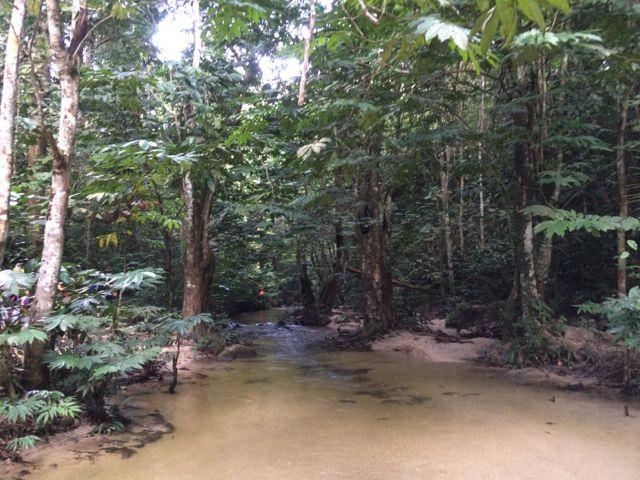 Sungai Pisang hike