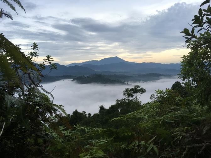 Bukit Panorama hike