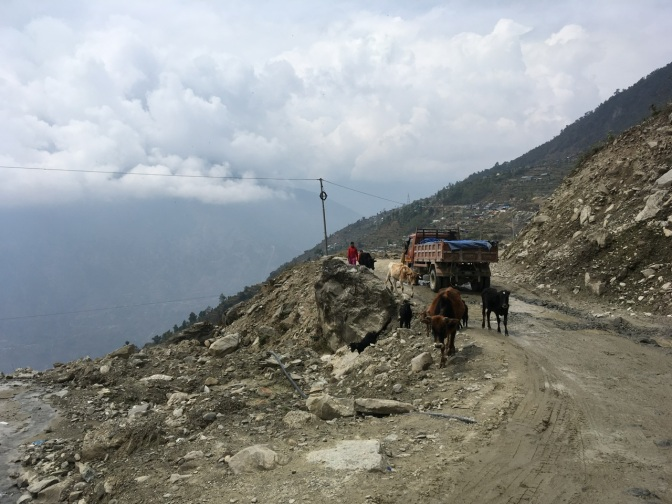 Lantang Valley trek – Kathmandu to Syabrubesi