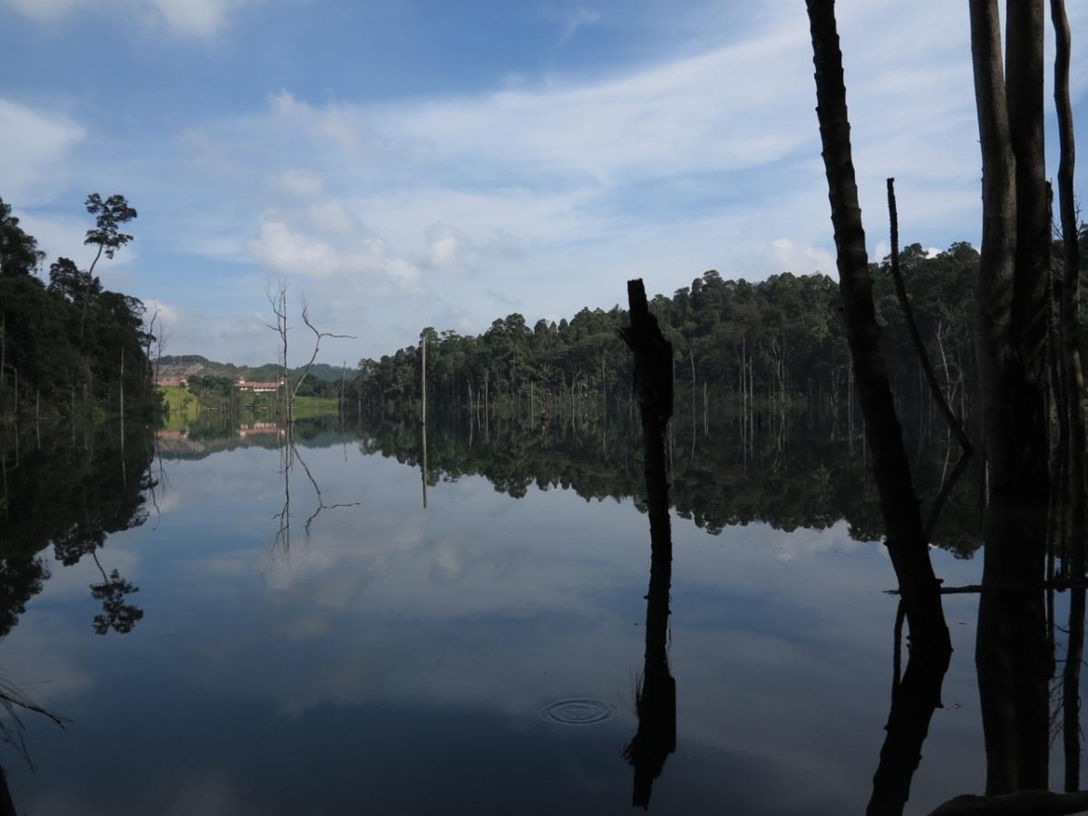 Bukit Sapu Tangan hike