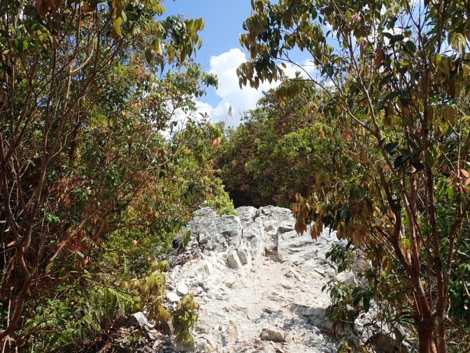 Bukit Batu Sawa hike