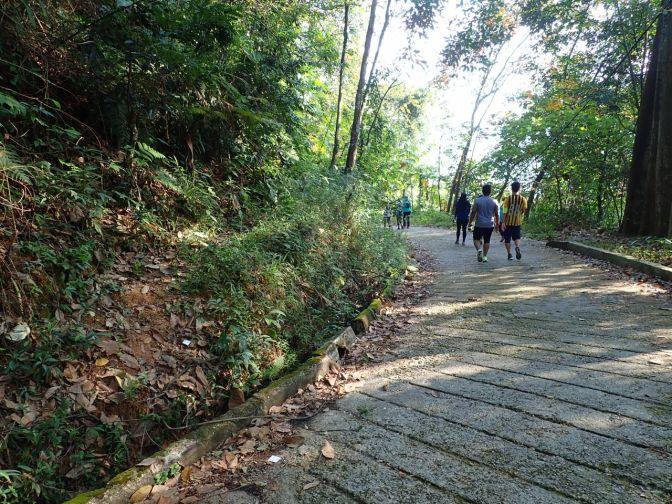 Bukit Dinding hike