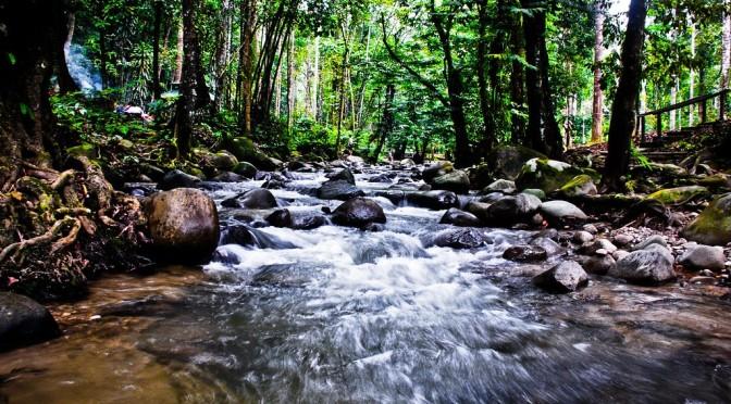 Taman Eko Rimba Kanching and Chongkak Park and Resort re-open