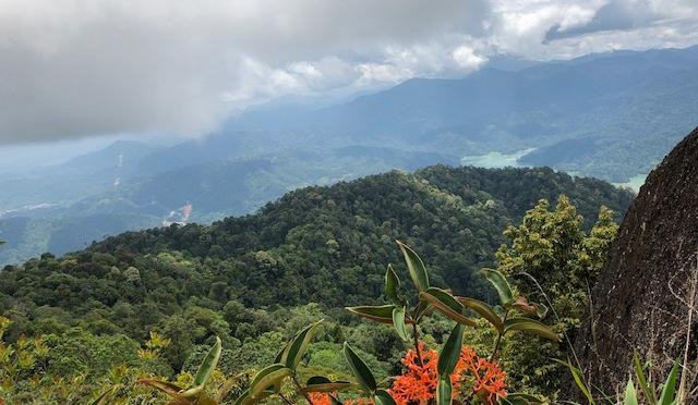 Bukit Kutu hike via Ampang Pecah